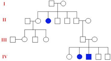 Gslc Genetics Utah Edu Units Basics Tour